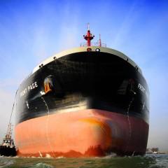 """Feestelijke opening van de Noorse """"Sea-Cargo Hub"""" bij Broekman Logistics"""