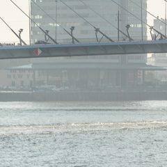 Minder stookolie en veel meer LNG in Rotterdamse haven